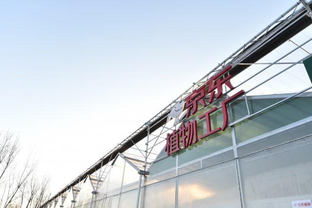 징둥닷컴, 중국 최대 규모 수경 재배 식물 공장 설립